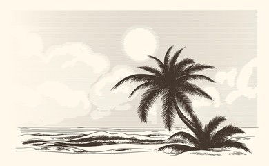 Vintage palm tree sketch. Vector palmtree ocean front in hand drawn style