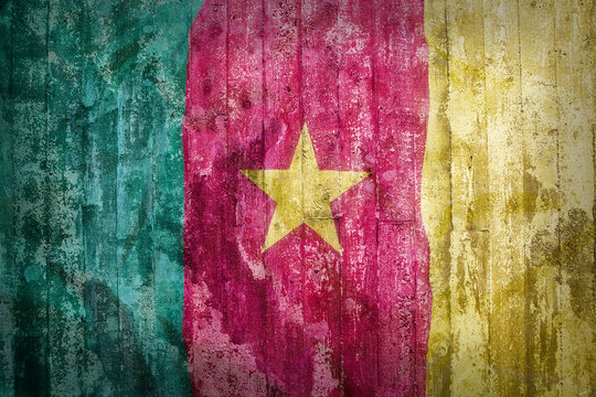 Grunge style of Cameroon flag on a brick wall