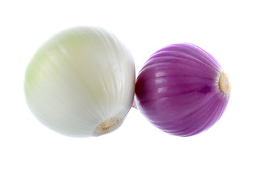 purple  onion  on white background