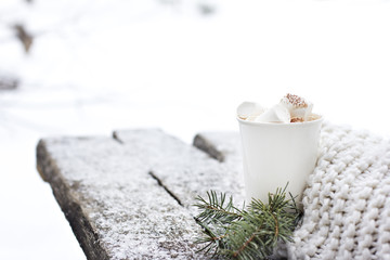 A cup of warm cocoa with marshmallows