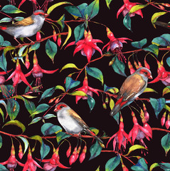 Hand-drawn watercolor seamless floral pattern with colorful pink fuchsia branches and finches birds. Tropical exotic flowers blossom on the black background. Repeated print for the textile, wallpapers