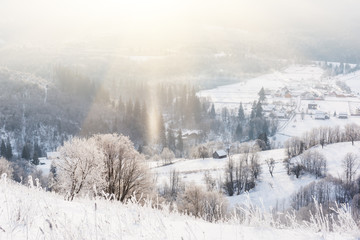 Hard frosted beautiful sunny mountain hill, snowy winter landscape of alpine countryside