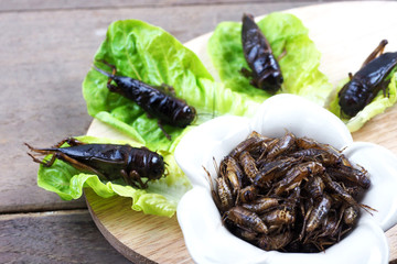 alternative of protein product, fried crickets with fresh green vegetable on wooden plate