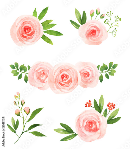 Watercolor pink roses flower illustration elements stock photo and watercolor pink roses flower illustration elements mightylinksfo