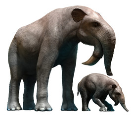 Deinotherium and calf