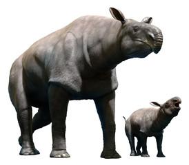 Paraceratherium with calf