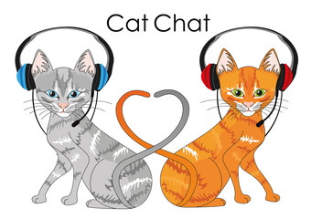cat chat