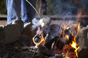 Midsection of man roasting marshmallows over campfire in forest