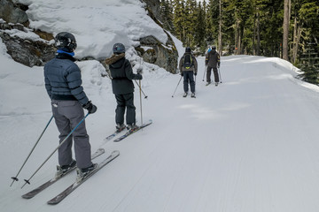 Tourists skiing in snow covered valley, Whistler, British Columb