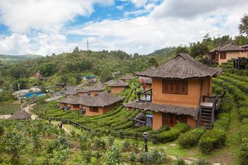 Ban Rak Thai, the tea farm and resort. Mae Hong Son, Thailand