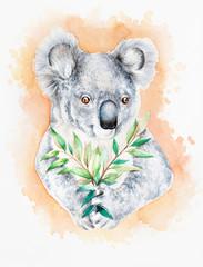 Watercolor illustration of a koala