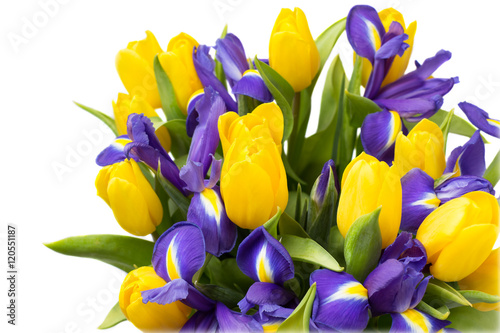 Flowers Yellow Tulips And Irises Isolated On White Background