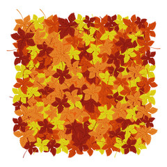 Autumn leaves background. Vector illustration. Floral abstract pattern. Fashion Graphic Design. Symbol of autumn,eco and natural.Bright colors leaves. Template for card,banner,wrapping and decoration.