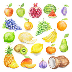 Watercolor fruit set. Juicy and colorful tropical fruit on white background including apples, mango, plum, coconut, lime and more. Vegetarian diet food with vitamins.
