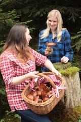 Junge Frauen sammeln essbare Pilze im Korb