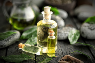 Spa composition with tea oil in glass bottles and fresh leaves