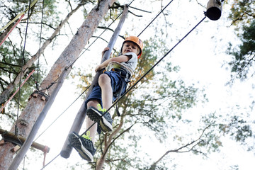 Portrait of active brave boy enjoying outbound climbing at adventure park on tree top