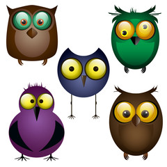 set of owls. Different birds. Cartoon. Funny. For your design