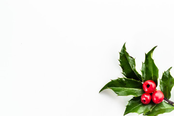 Christmas holly berry isolated on white background.