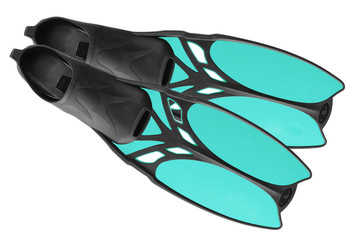 The pair of blue fins