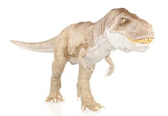 Tyrannosaurus Rex, Dinosaur isolated on white background
