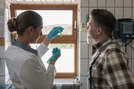 Laboratory technician and worker in lab of purification plant discussing water sample