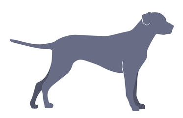 Dog silhouette on a white background