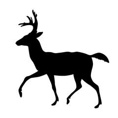 deer vector illustration silhouette black profile