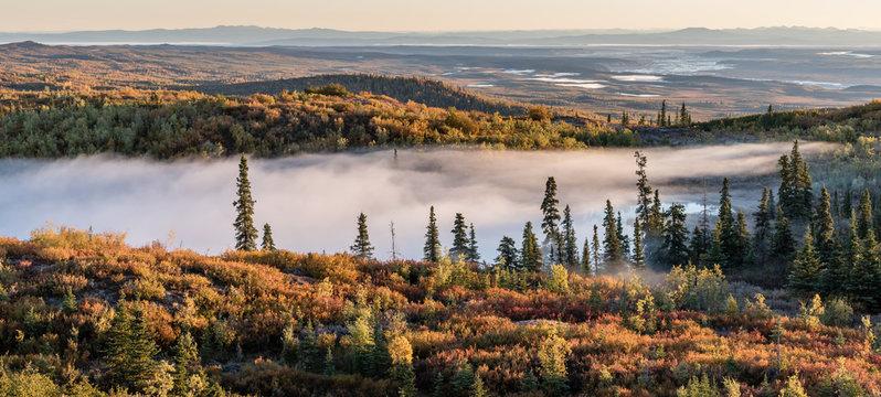 Hunting sight in Interior Alaska