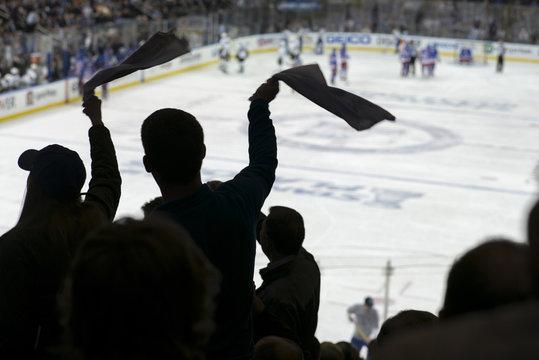 Cheering crowd at a hockey game, Madison Square Garden, Manhattan, New York City.