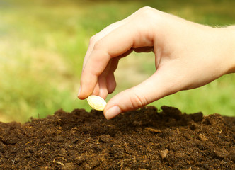 Woman hand putting seed into soil