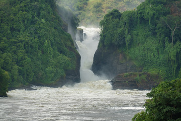 Murchison Falls with toursits on top, Uganda Wall mural
