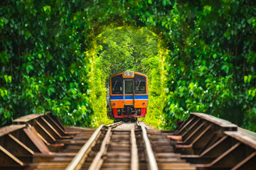 Train running in tree tunnel on the railway in Bangkok Thailand.