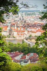 The view on Prague roofs through the green trees and bushes