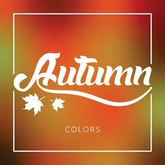 Autumn / fall season greeting vector banner / poster