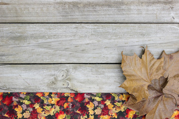 Blank wood sign with colorful leaves border