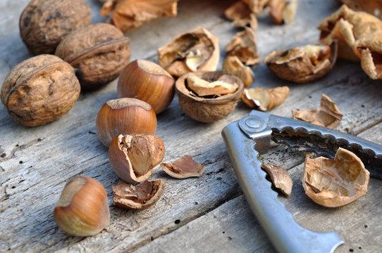 noix et noisettes décortiquées avec casse noix sur vieille planche