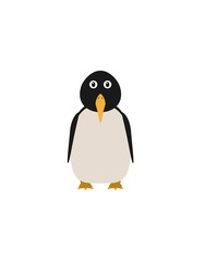 Funny penguin character