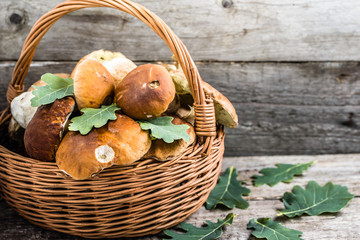 Fresh mushrooms in basket, boletus from forest on rustic table