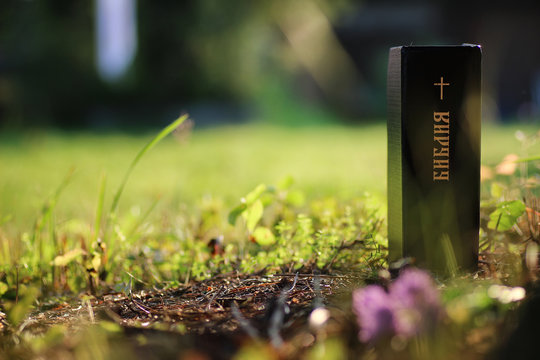 """inscription on the book of the Bible """"Bible"""" with cross in natur"""