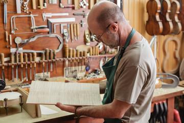Violin maker choosing wood for new instruments