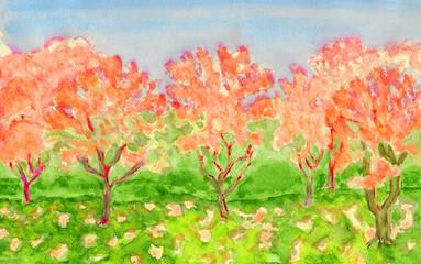Orange trees, watercolours