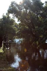 涼しげな清流と水車。長野県安曇野市。