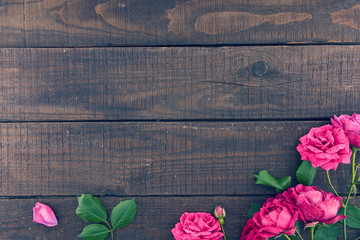 Frame of roses on dark rustic wooden background. Spring flowers.