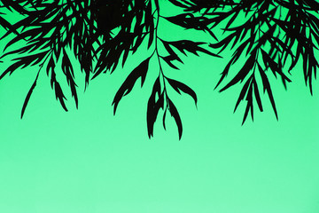 Silhouette of leaves over green background