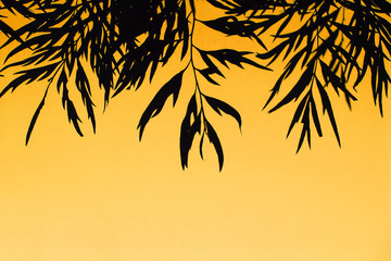 Silhouette of leaves over orange background