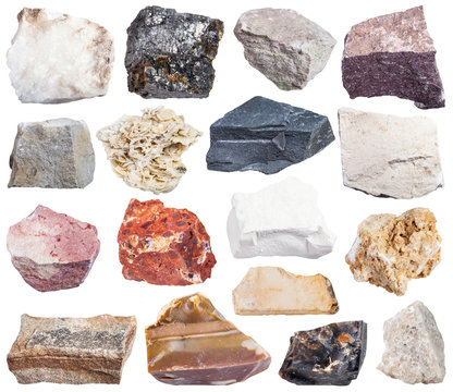 set of sedimentary rock specimens