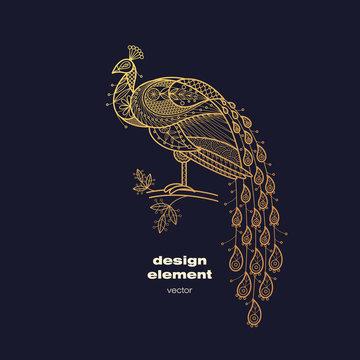 Vector decorative image of a peacock bird.
