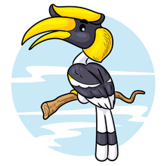 Great Hornbill Cartoon