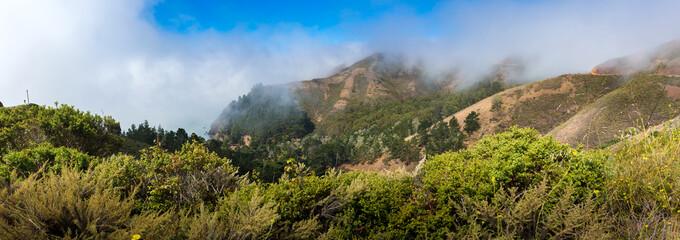 Fog over Pacific coast
